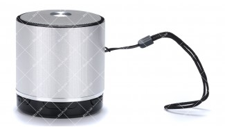 Колонка портативная  WSTER WS-231BT Bluetooth серебристая